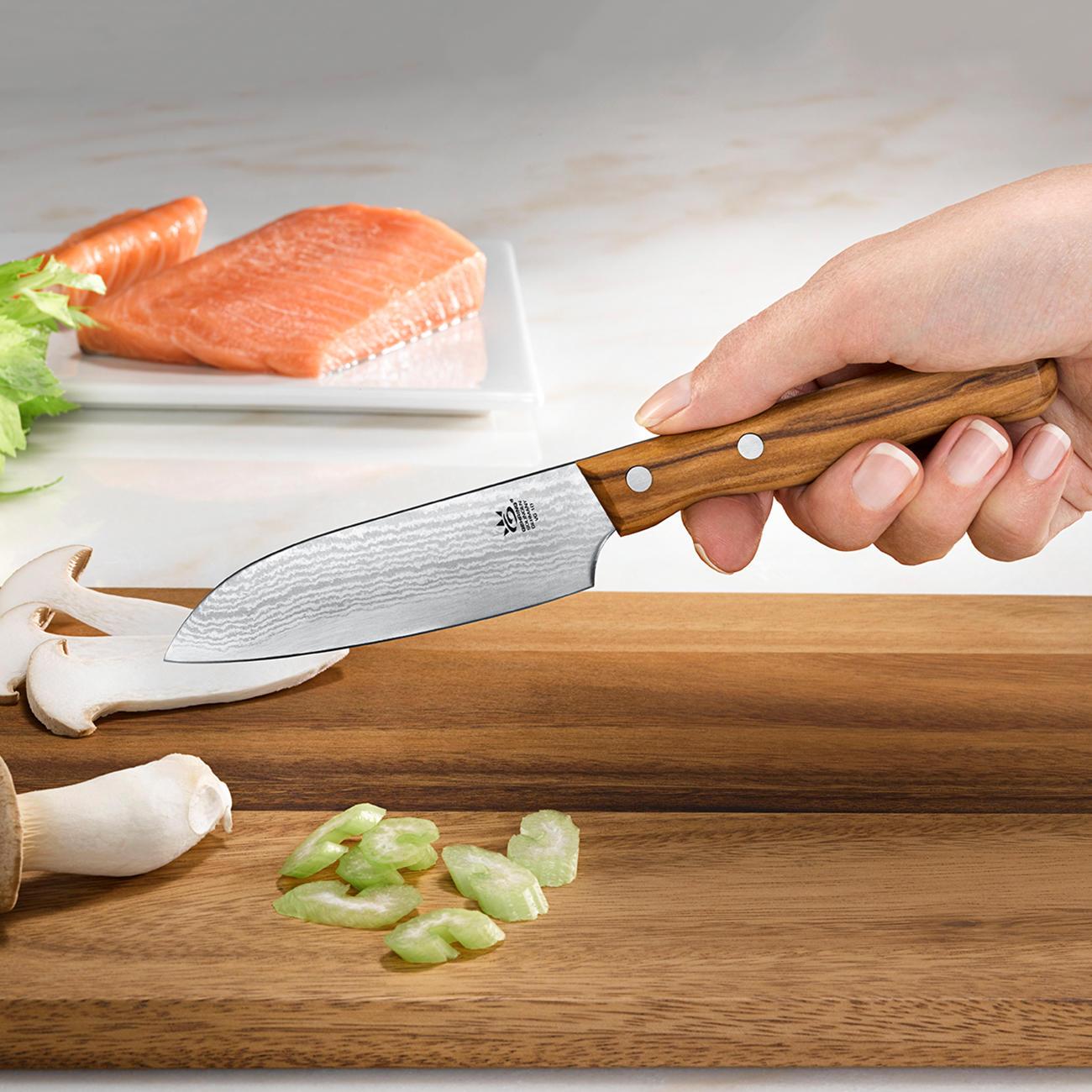 Wonderbaarlijk Damast mes | 3 jaar productgarantie | Pro-Idee RC-25