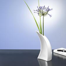 Gietvaas - Sculpturale vaas? Of een bijzondere gieter? Allebei!