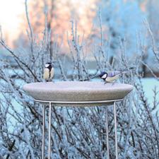 Uw Granicium®-vogelbadje is vorstbestendig tot -50 °C.
