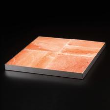Zoutblooken met Edelstalen schaal voor zoutblokken