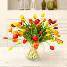 geel/oranje/rood