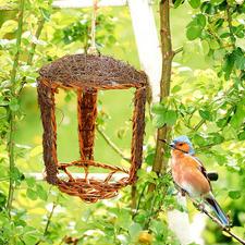 Open nesthulp, set van 2 - Direct bewoonbaar. De perfecte basis voor het toekomstige vogelnestje.