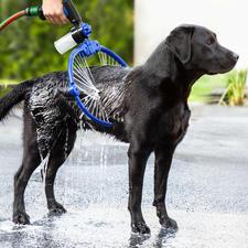 360° wassysteem voor honden - Met dit 360°-wassysteem gaat dit nu veel eenvoudiger en comfortabeler, voor u én de hond.