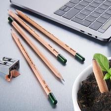 Duurzame plantbare potloden, set van 5 - Geniale plantbare potloden met kruiden- en bloemzaden.