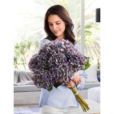 Hortensiaboeket - Deze bloemen blijven altijd mooi. Elegante bos, ziet eruit als door een bloemist gebonden.
