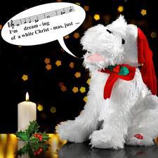 Zingende kersthond - Deze betoverende kersthond verovert ieders hart met zijn gezang.