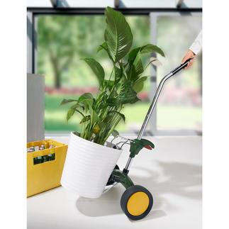 Transportwagen voor plantenbakken Gemakkelijk rollen in plaats van moeizaam slepen.