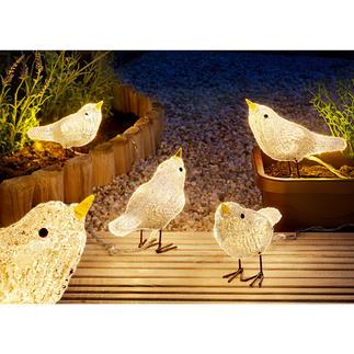 Led-vogels Het hele jaar door een betoverende decoratie, binnen en buiten.