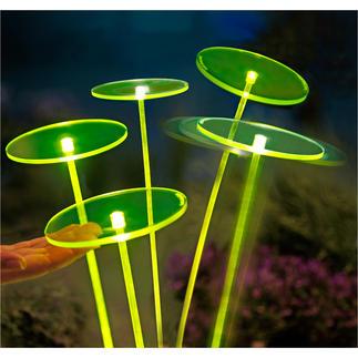 Swing Lights, per stuk Deze nieuwe generatie zonnevangers zorgt voor fascinerende lichteffecten.