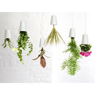 Bloempot Sky Planter Uw kruiden en planten hangen vanaf nu heel modern op de kop aan het plafond.