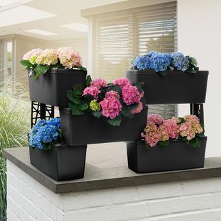 Zelf samen te stellen plantenbakken, set van 5 Groene afscheiding, bloeiende bescherming tegen inkijk, hoge kweekbak voor kruiden, bloementrapje, ...