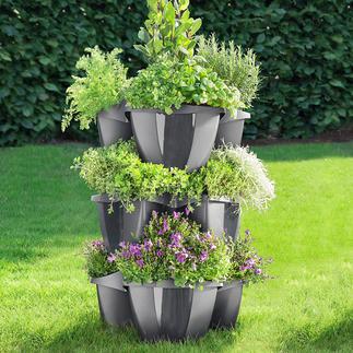 Plantentoren, 3 elementen Grote bloemen weelde – klein oppervlak.