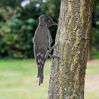 Contourvogels Natuurgetrouwe vogelmotieven van fijn gelaserd staal. Nu een eyecatcher in uw tuin.