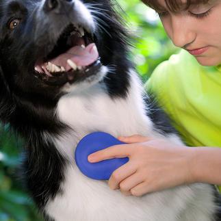Zilopet verzorgingsborstel voor dieren Verzorgt op een vriendelijke manier de vacht van uw huisdier.