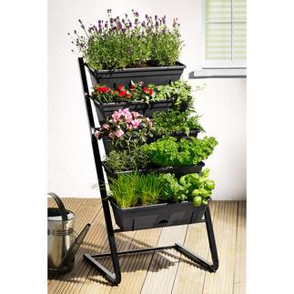 Plantentrap Weelderig groen, bloemenpracht en een rijke oogst: ruimtebesparend verdeeld over vijf etages.