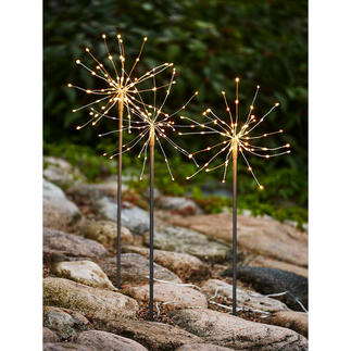 Led-sterretjesverlichting, set van 9 Deze 'sterretjes' branden niet op dankzij de fonkelende ledlichtjes die zo fijn zijn als dauwdruppels.