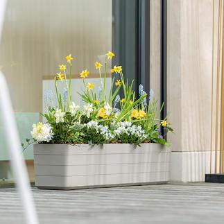 Design-plantenbak Modern, strak en elegant.