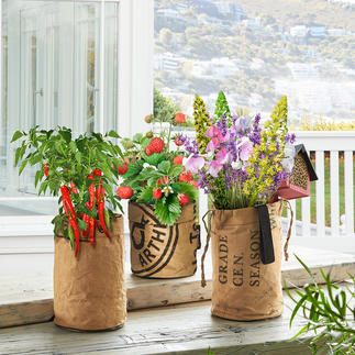 Minituin Met deze plantenzakken maakt u van uw balkon, keukenraam of patio een uitbundige zomertuin.