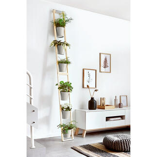 Plantenladder Praktisch en ruimtebesparend: een weelderige tuin op een klein oppervlak.