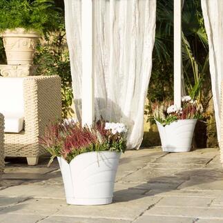 360°-plantenbak Geniale 360°-plantenbak die om een zuil, paal of regenpijp geplaatst kan worden.