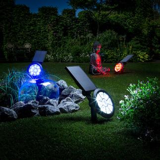 Solar-tuinlamp met kleurenwissel Verlicht op een schitterende manier tuin, bomen of een sculptuur. In 7 kleuren of met kleurenwissel.