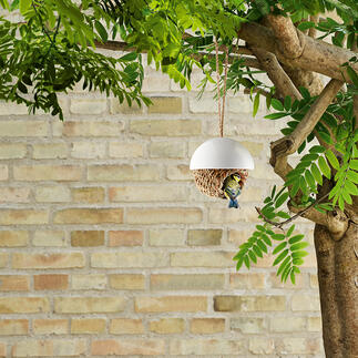 Vogelnest Klaar voor gebruik: met de hand gevlochten biezen nest voor mezen en soortgelijke vogels.