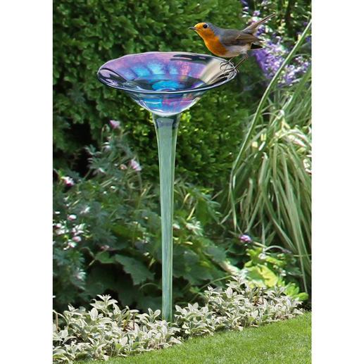 Vogeldrinkplaats van regenboogglas - Schitterende glazen bloem in alle kleuren van de regenboog. Mondgeblazen & met de hand gevormd.