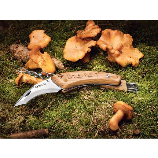 Maserin paddenstoelenmes Het inklapbare paddenstoelenmes. Greep van luxueus, extreem bestendig olijfhout. Ergonomisch voorgevormd.