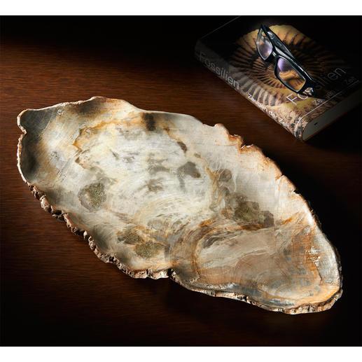 Serveerschaal van fossiel hout Haal iets unieks in huis: schaal van 20 miljoen jaar oud, versteend hout.