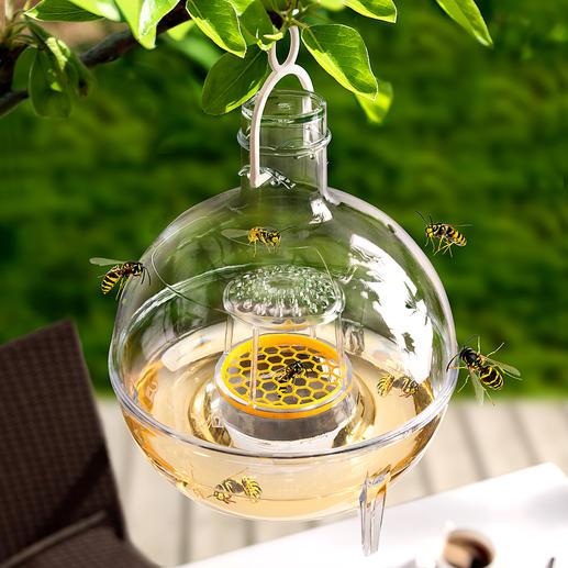 Slakken-/wespen- en vliegenval Bio-Catch Uiterst doeltreffende bierval tegen slakken en wespen.