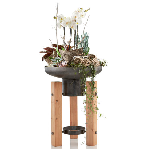 Ook heel mooi als plantenschaal– een decoratieve kweekbak voor terras, balkon en entree.
