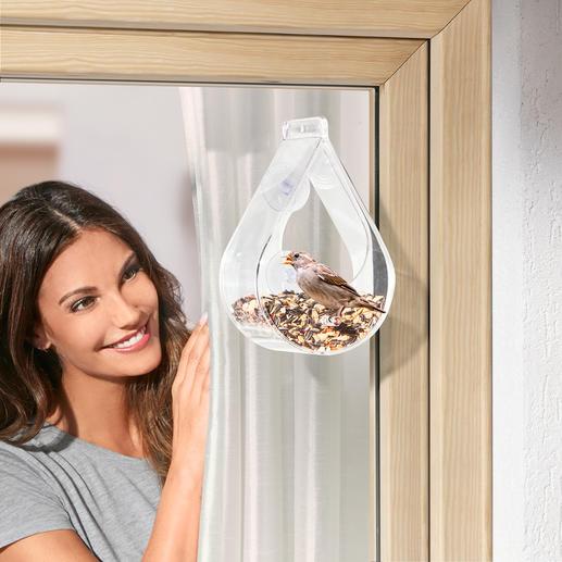 Vogelvoederhuisje voor op het raam - Voor vele vogels de perfecte voederplaats. Voor u een betoverend gezicht.