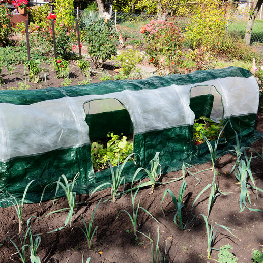 SuperDome tunnel van folie Optimale groeiomstandigheden voor uw planten. Binnen 5 minuten klaar.