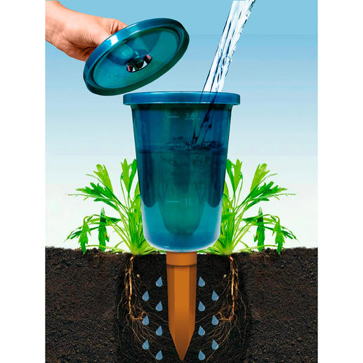 Hydro Cup bewateringshulp, set van 4 Gemakkelijk, spaarzaam, efficiënt.