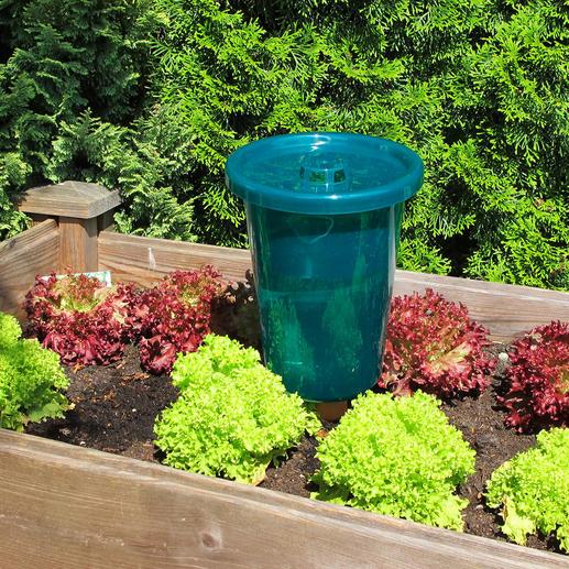 Wordt bij regen automatisch bijgevuld: door de openingen in het deksel druppelt het regenwater gewoon in het reservoir.