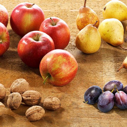 Kleine notenraper geschikt voor bijv. walnoten, pruimen, kersen, mirabellen en golfballen. Grote notenraper geschikt voor appels, peren, kweeperen, dennenappels en tennisballen.