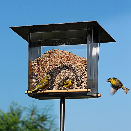 Vogelvoederhuisje 'Kijkvenster' Urban, modern, gemaakt van geborsteld edelstaal.