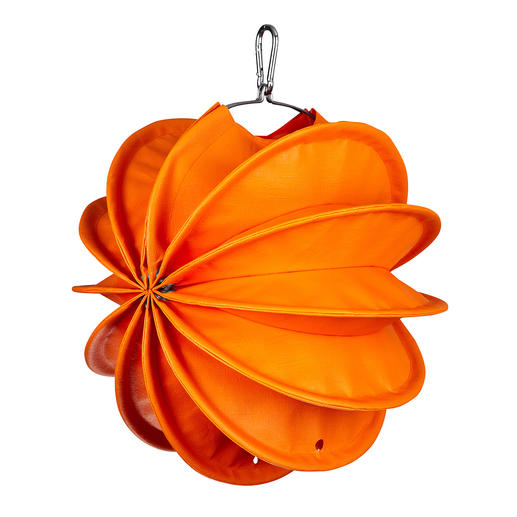klein, oranje