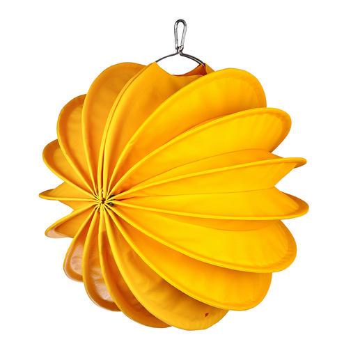 groot, geel