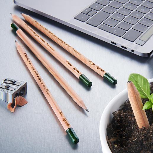 Duurzame plantbare potloden, set van 5 Geniale plantbare potloden met kruiden- en bloemzaden.