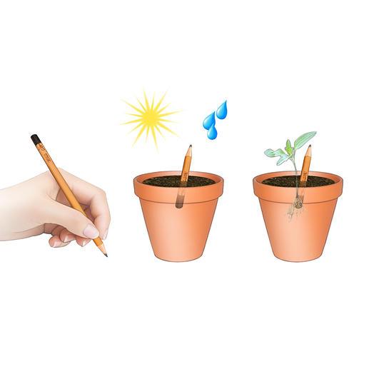 Schrijven–planten–wat zonlicht en een beetje water–en na een paar dagen zie je de eerste groene spruiten.