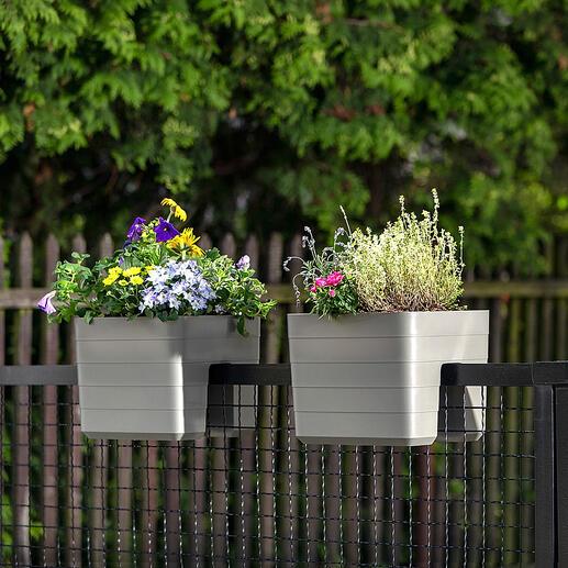 Balkonbak met waterreservoir Goed voorbereid op een warme zomer: balkonbak met waterreservoir van 3,2 l.