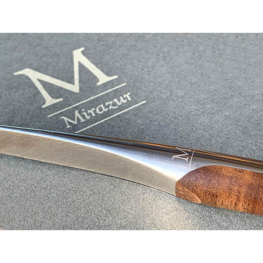 Sknife steakbestek of steakmes, 2-delige set